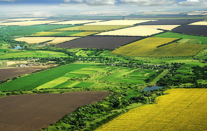 Кабмин снял ограничения на выделение земли участникам АТО 1