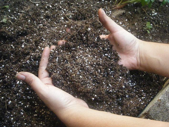Весенние работы в саду и огороде (удобрение почвы)