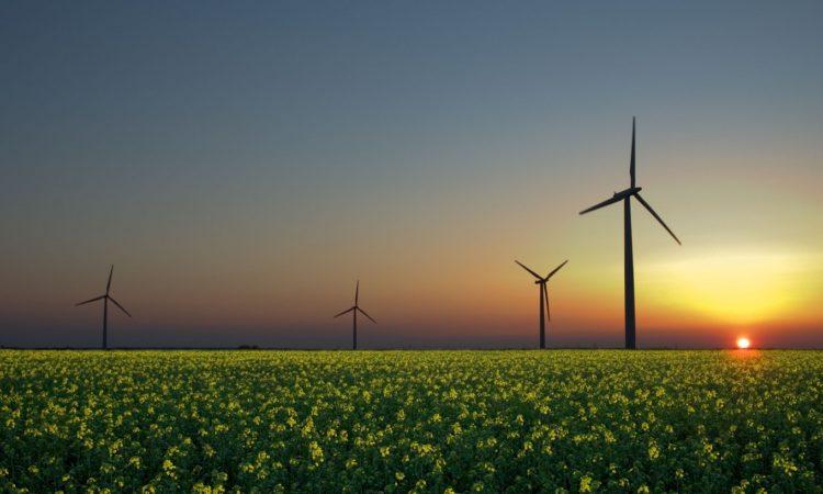 У Львівській області з'явиться потужна вітряна електростанція 1