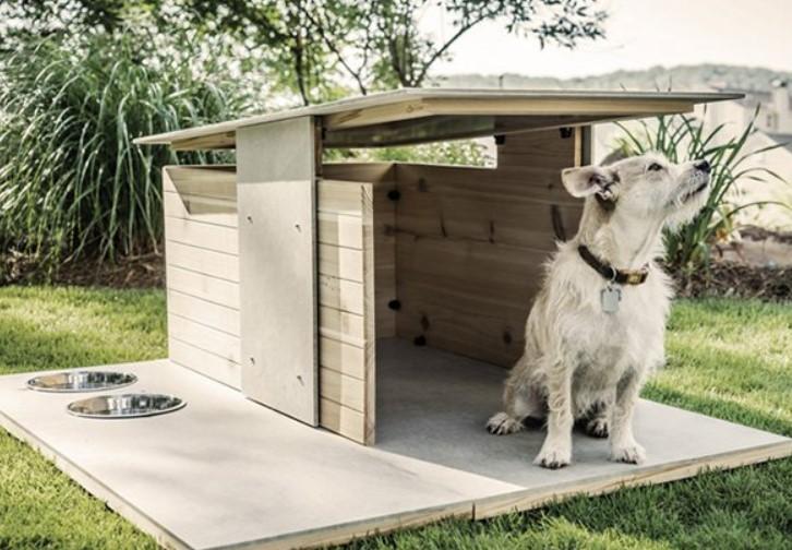 Дизайнерская будка: дом мечты для четвероногого любимца