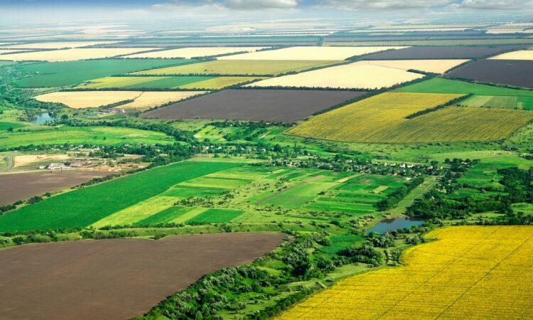 Земельные кадастры