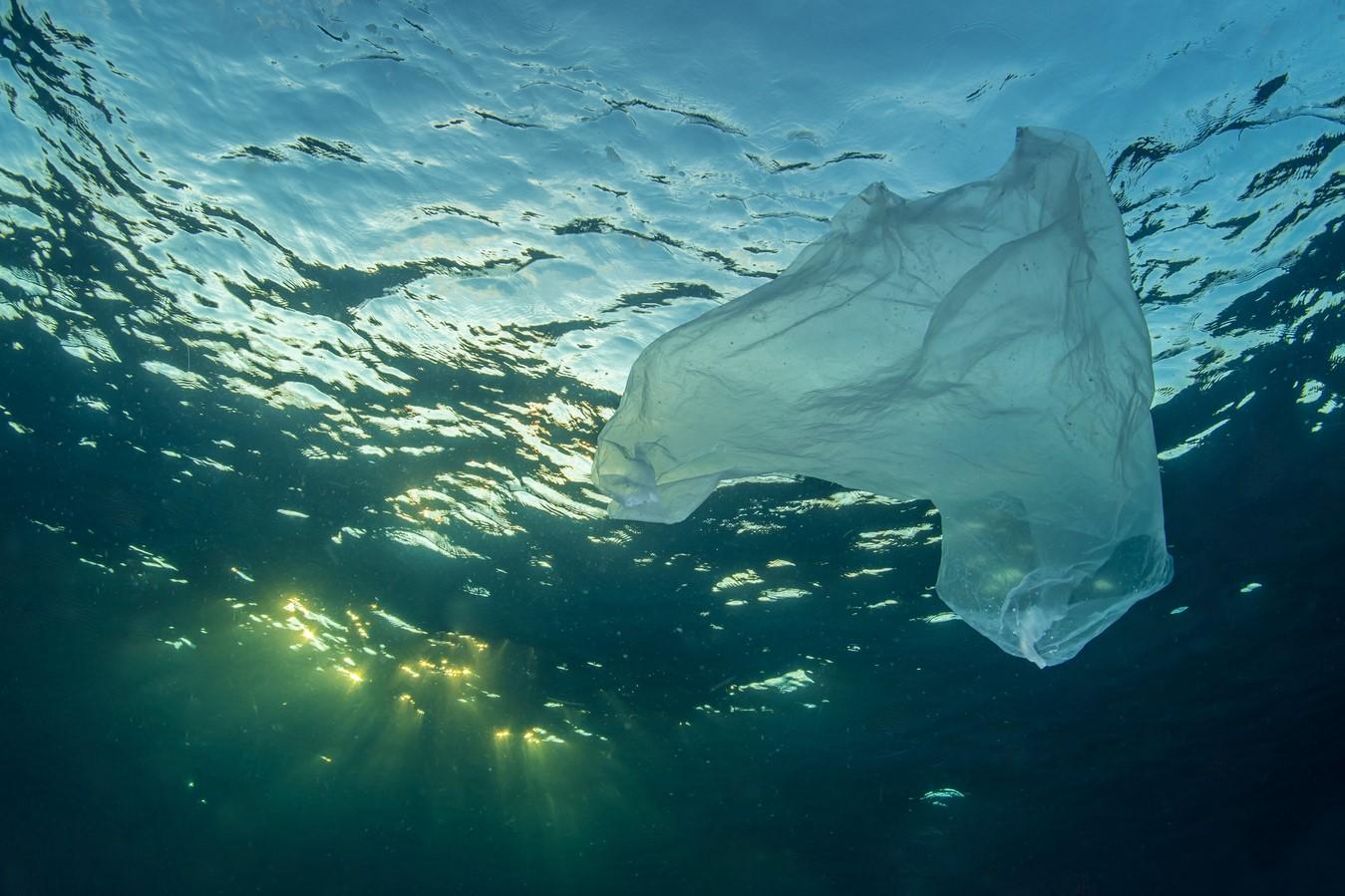 Биоразлагаемый пластик (Біорозкладаний пластик)