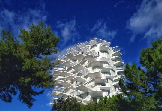 L'Arbre Blanc (Белое дерево) башня. L'Arbre Blanc (Біле дерево) вежа